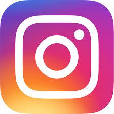 suretaste instagram